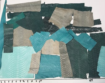 Lot of 21 Python Snake Scrap Green Turquoise Mint etc remnants