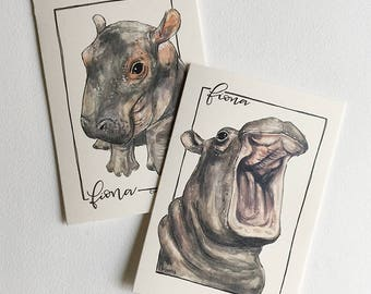 Fiona the Hippo Greeting Cards (Single and Packs)