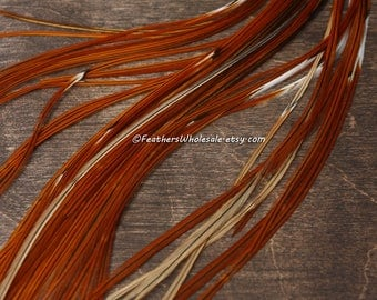 Brown Feather Extensions 50 Long Hair Feathers Natural Brown Furnace Rooster Hackle Bulk Wholesale Supplies for Crafts Accessories for Hair