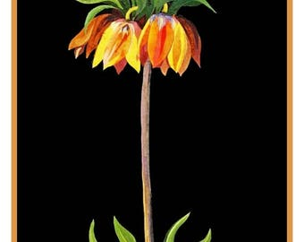GREAT SALE Digital DOWNLOAD Mary Delany's Fritillaria Flower Counted Cross Stitch Chart / Pattern