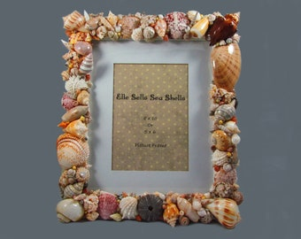 Sea Shells Home Decor Picture Frame 5 x 7 or 8 x 10