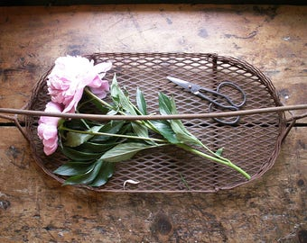 Vintage Rusty Wire Gathering Basket - Farmhouse Rustic Tray