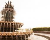 Pineapple Art, Charleston SC Photography  Pineapple Fountain in Waterfront Park - South Carolina Photos,