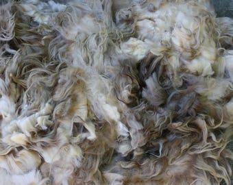 Whole Icelandic Fleece