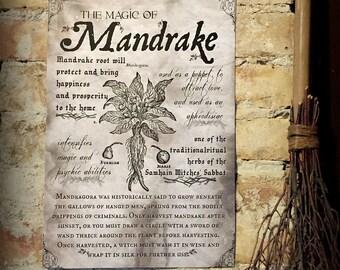 Magic of Mandrake large print