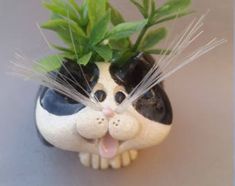 Black and white cat planter ( Fake) toothpick holder,Tuxedo cats,clay cats,hand sculpted,original by Pencepets,Pence cats animal sculpture