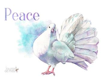 Dove print of watercolour painting, D22317, A4 size, Peace Dove print, Peace Dove watercolor print, Peace print, Bird art print