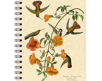 Notebook A6 - Hummingbirds