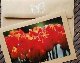 Blank photo greeting card Red Tulips