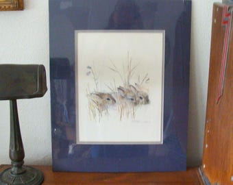 1976 Vintage Mads Stage Matted Print, Baby Hares?  Rabbits, 20 x 16