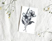 "Dainty Daisy Small Botanical Temporary Tattoo 2"" x 3.5"""