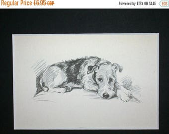 SALE Airedale terrier Vintage Mounted 1936 Mac Lucy Dawson - dog plate print Unique Birthday Christmas Anniversary dog lover  gift