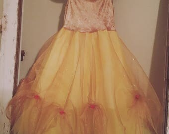 Beauty and the Beast Brlle dress.