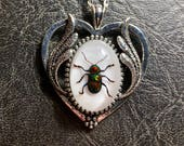 Sweet Silver Heart Real Rainbow Metallic Leaf Beetle Insect Preserved Specimen in Resin Cameo Metal Frame Necklace