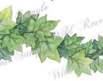 VinTaGe XL LuSH GrEeN IvY SWaGs ShaBbY DeCALs ~FuRNiTuRe SiZe~