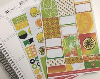 Citrus Mini Kit - Planner Stickers - Erin Condren - Happy Planner