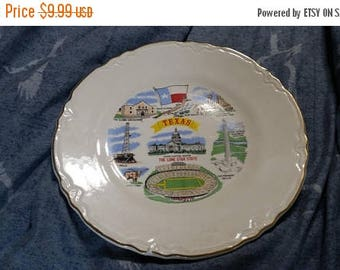 On Sale USA Pottery Texas Souvenir or State Decorative Plate or Wall Hanging Vintage Kitchen Made in USA