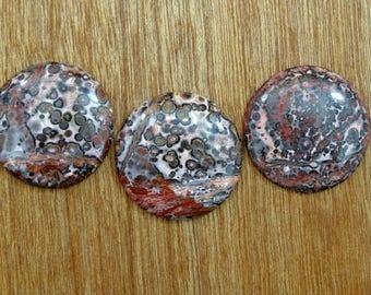 3 Colorful Cabochons of Leopard Jasper.