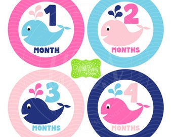 Whale Monthly Stickers - Baby Month Stickers - Baby Growth Stickers - Girl Milestone Stickers - Pink and Blue Baby Stickers - 058