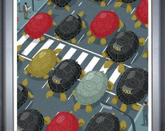 Tortoise traffic