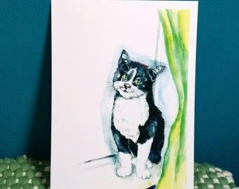 CAT (1 card)