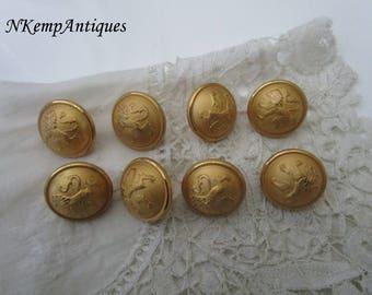 Old gilt button x 8