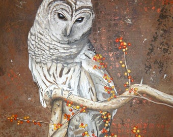 Barred Owl and Berries 20x16 Inch Wrapped Canvas Acrylic Painting
