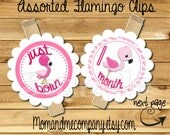 Baby Girl First year photo clip banner newborn to 12 months first birthday 12 month banner Baby flamingo first year banner  RIBBON INCLUDED