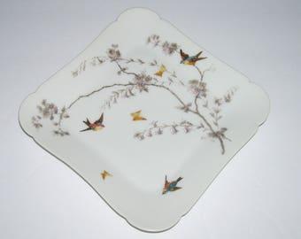Antique Charles Field Haviland Limoges Square Plate Birds Butterflies
