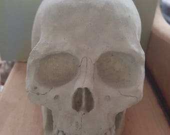Cement Skull Candle Holder