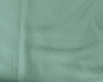 Fabric - cotton/elastane t-shirt weight jersey fabric -  light green - knit fabric.