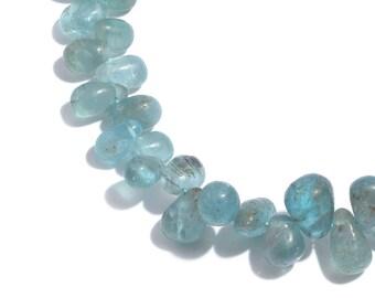 Madagascar Paraiba Apatite Teardrop Varied Size Beads Strand 9 inch TGW 110.00 cts.