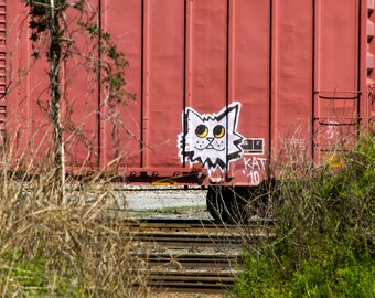 Cat: Train are, graffiti. Frame not included. Individually photographed and printed by Frank Heflin