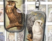 80% Off Spring Sale Vintage Owls  1 x 2 Digital Collage Sheet Images for Pendants, Scrapbooking, Jewelry, Cardmaking Domino Magnets Bezels A
