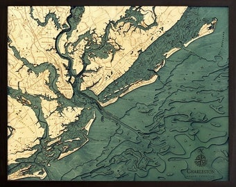 Charleston Wood Carved Topographic Depth Map
