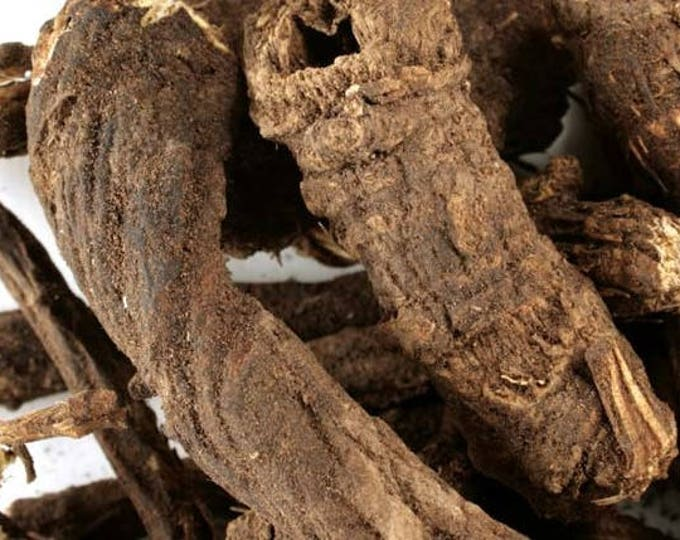Osha Root, whole - Wildcrafted by Native Americans