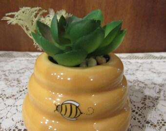 Honey pot with Artificial succulent