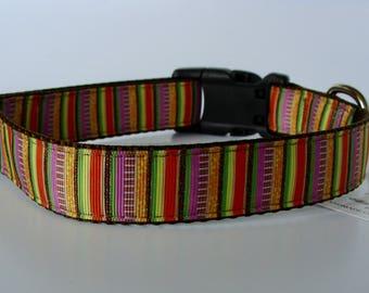 READY TO SHIP! Fall Striped Dog Collar