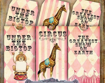 4 Pink Circus Envelopes with Matching Tags