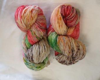 CC17/466 Handdyed Sock Yarn 4ply