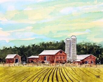 Moo Valley Farm