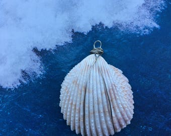 Seashell Necklace - Wire Wrapped - Florida