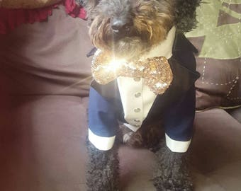 Royal blue dog tuxedo with black lapels and golden sequins bow tie Dog wedding attire Formal dog suit Birthday dog costume