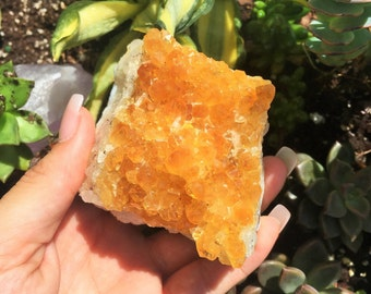 Citrine Crystal Cluster w/ Reiki Perfect for Healing, Chakras, Meditation, Home Decor