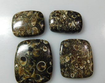 174 CTS AAA+ quality 100% natural 4 pcs turtela jasper from africa