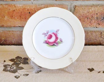 Royal Albert Painters Rose fine porcelain side, bread plate, 1960s, gift idea