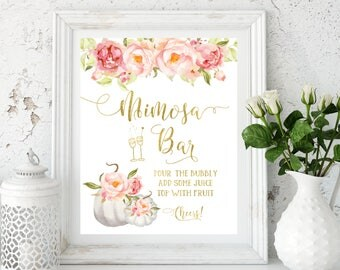 Mimosa bar sign White pumpkin Blush Bubbly Bar Sign Bridal Shower Sign Mimosa bar printable Champagne bar sign  Bridal Shower Decor idbs84