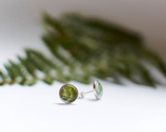 Fern Earrings, Fern Stud Earrings, Fern studs, Sterling Silver, Silver Fern Earrings, Botanical Jewellery, Plant Studs, Green Stud Earrings