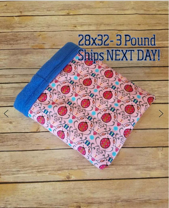 Lady Bug, 3 Pound, WEIGHTED BLANKET, Ready To Ship, 3 pounds, 28x32 for Autism, Sensory, ADHD, Calming, Anxiety,