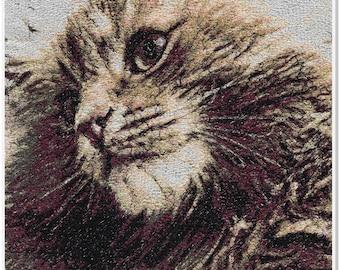 Embroidered Art - Oscar